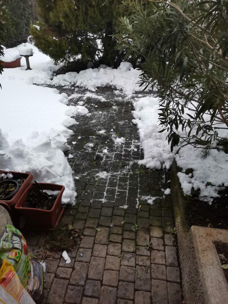 l'inverno della fatina